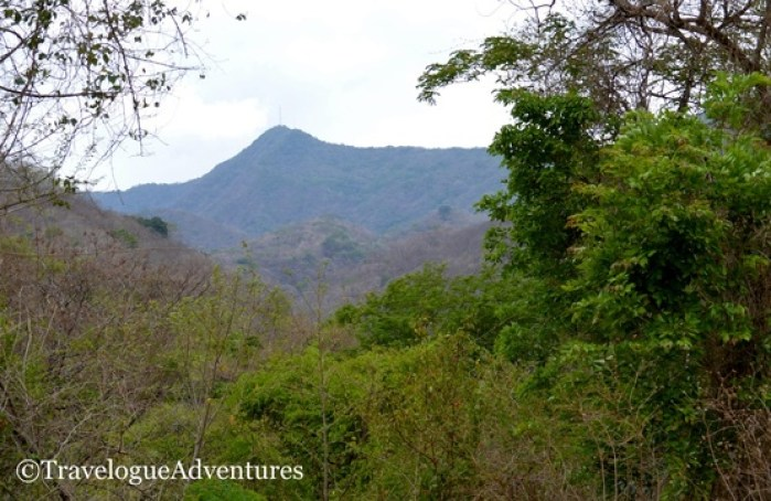 Diria National Park Photo 2