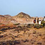 Explore the Heights and Wildlife of Sir Bani Yas Island with Anantara