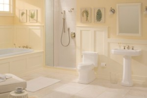 Best choice for kitchen and bath plumbing fixtures
