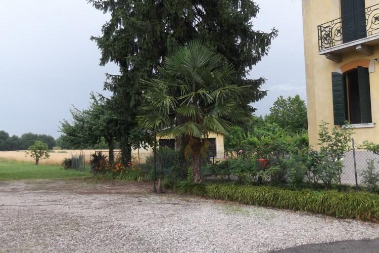 Italy_Anna's Villa_field