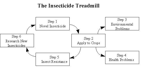Pesticide Treadmill Diagram Explanation