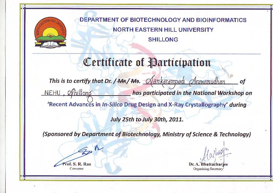 ... Certificate Participation Examples Images   Certificate Of Participation  Format ...