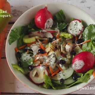 Mixed veggie salad with homemade yogurt dressing