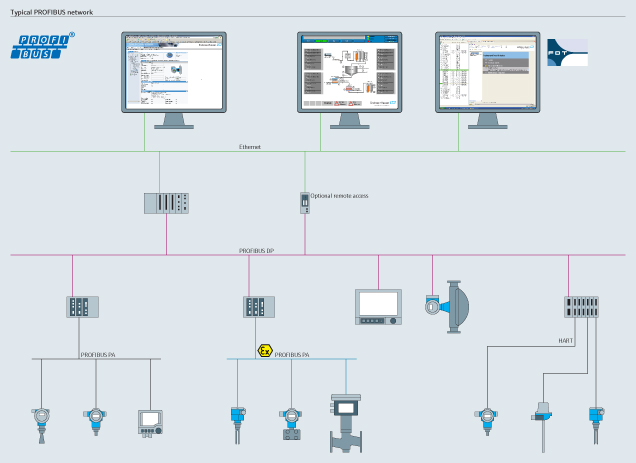 Process automation with PROFIBUS technology Endress+Hauser