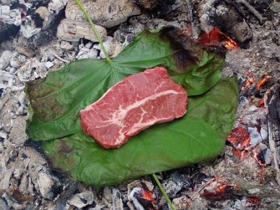bushcraft equipment showing meat cooking on a leaf