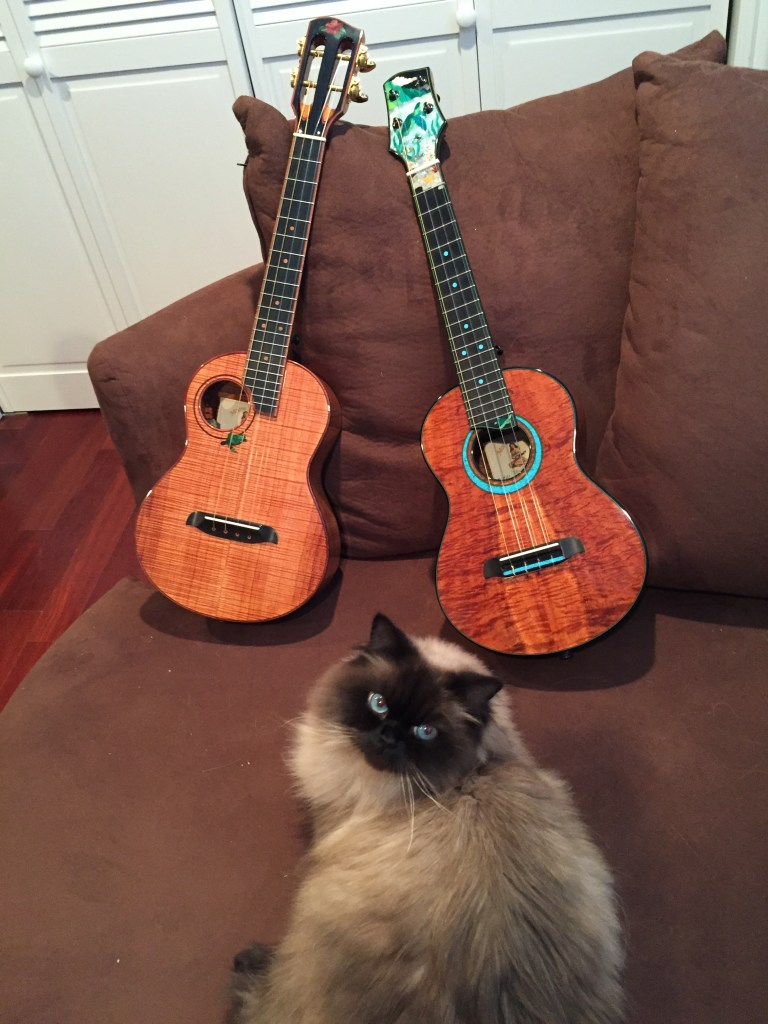 Staci Blevins - cat Keoki with my two custom ukuleles by Chuck Moore of Moore Bettah Ukuleles