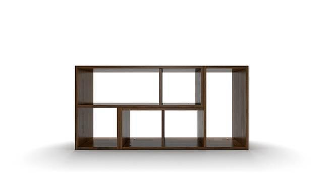 Hayden Display Shelf 35 Book Capacity Urban Ladder