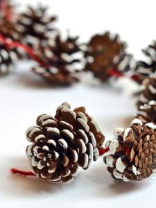 original_camille-styles-holiday-pine-cone-garland-step3b_3x4-jpg-rend-hgtvcom-616-822