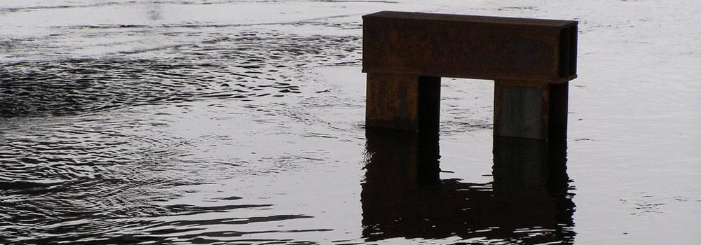 Reflection Essay on Bigelow\u0027s Existentialism - Blog Ultius