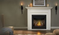 Gas Fireplaces in Guelph | Direct Vent and Inserts