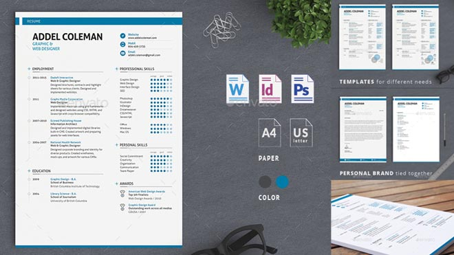 Best Professional Resume Templates Psd, word  AI Format Collection