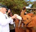 Visiting elephants orphanage in Kenya