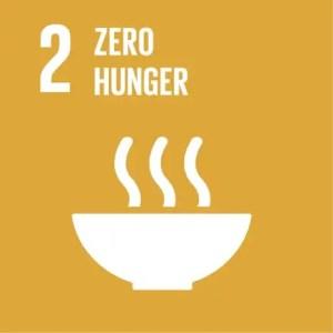 SDGs Icon Goal 2