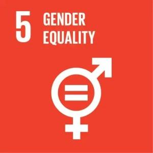 SDGs Icon Goal 5