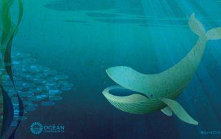 Ocean Conf. Poster