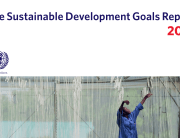 Image: SDG Report 2017 cover