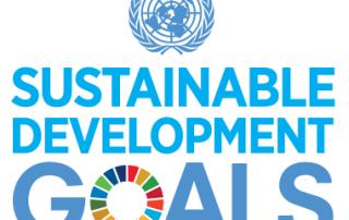 E_SDG_Logo_UN Emblem-