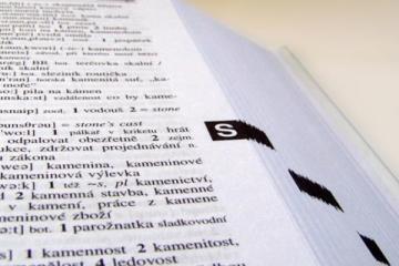 juego del diccionario diccionario