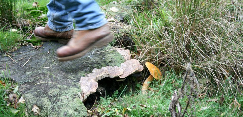 Fin de semana en tunbridge wells Seta