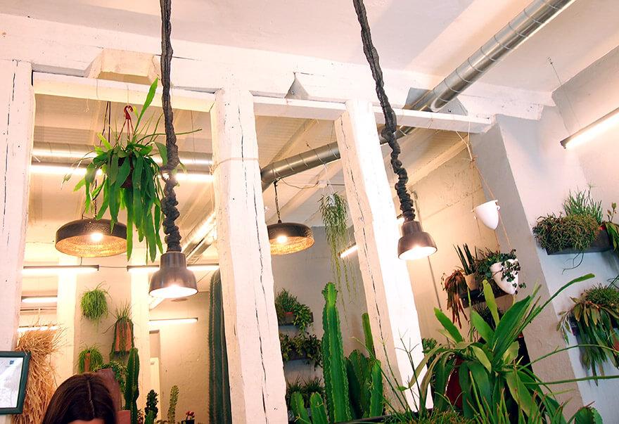 Barrio de las salesas de madrid cacto cacto techo