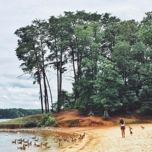 Beaches and lakes VSCOcam lakelanier
