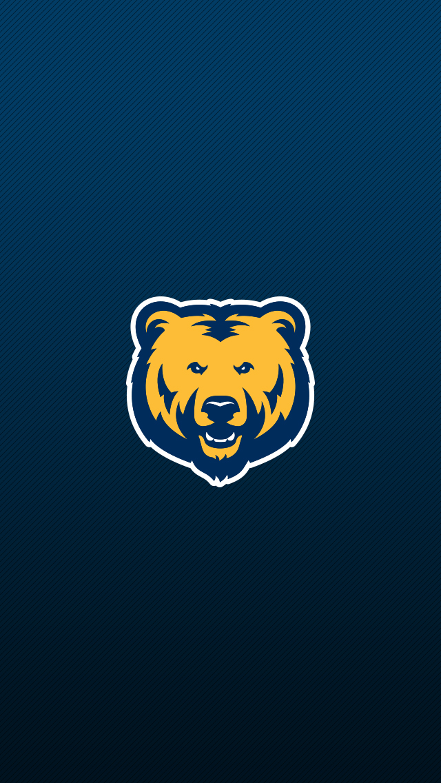 Feeling Wallpaper Hd Bear Pride At The University Of Northern Colorado