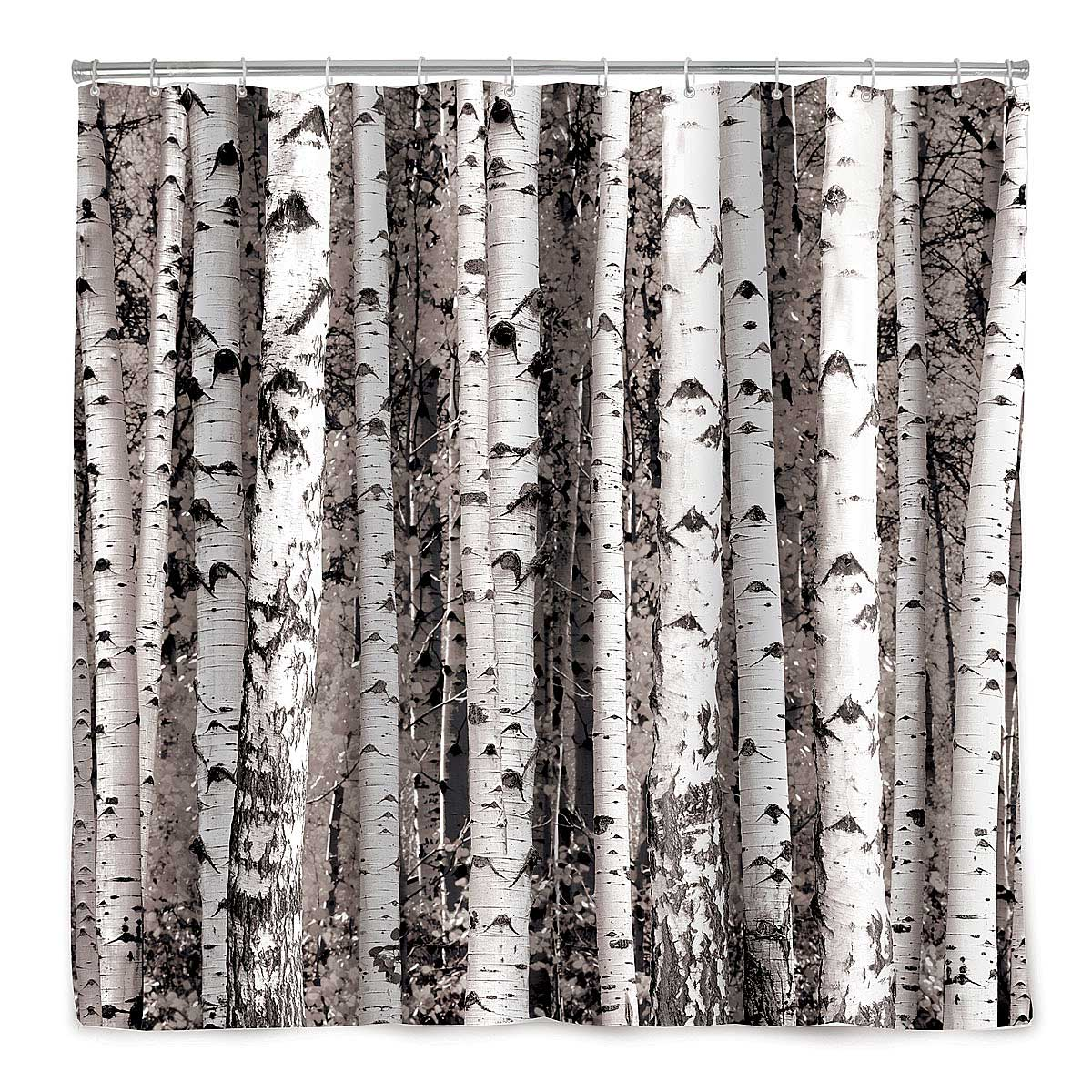 Birch forest shower curtain 1 thumbnail