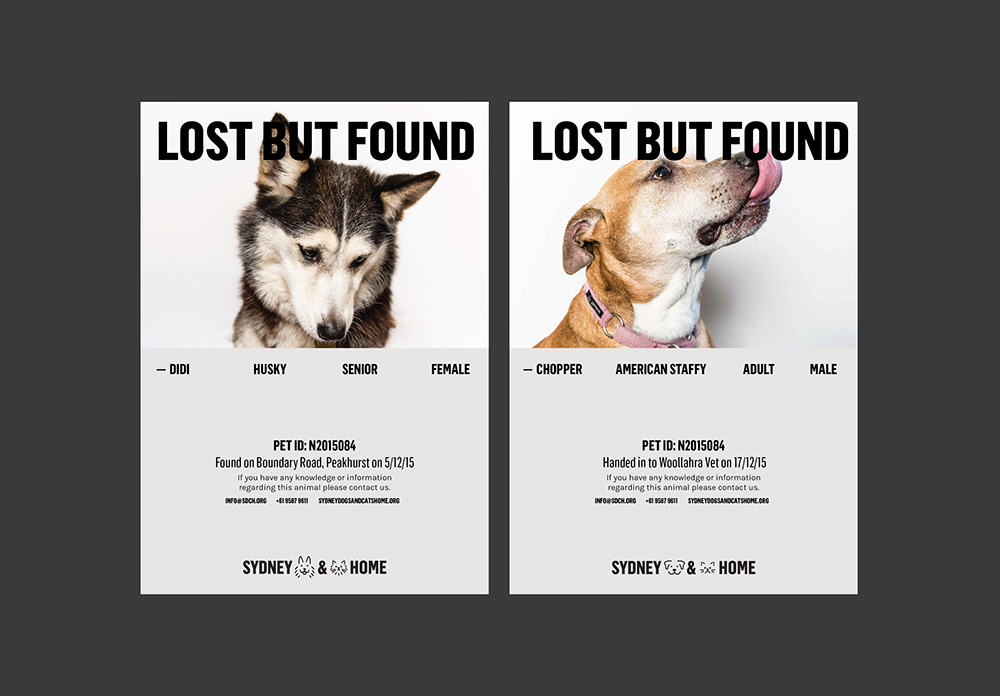 Brand New New Logo and Identity for Sydney Dogs \ Cats Home by - lost dog flyer examples