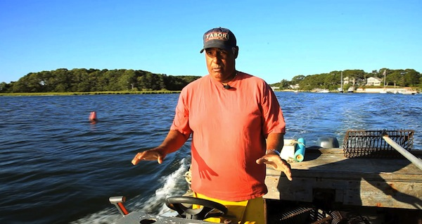 Saving Paradise: Cape Cod's Water at Risk