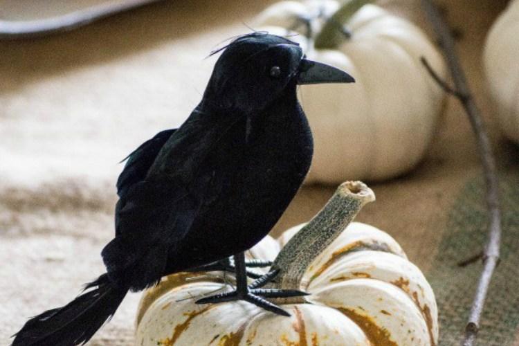 Easy to Make Halloween Centerpieces