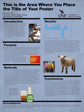UNF - Center for Instruction  Research Technology - Poster Gallery