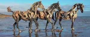 Driftwood Horse Sculptures by Heather Jansch