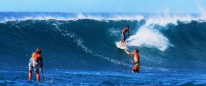 Hawaii Vacations – Extreme Sport Island Tour