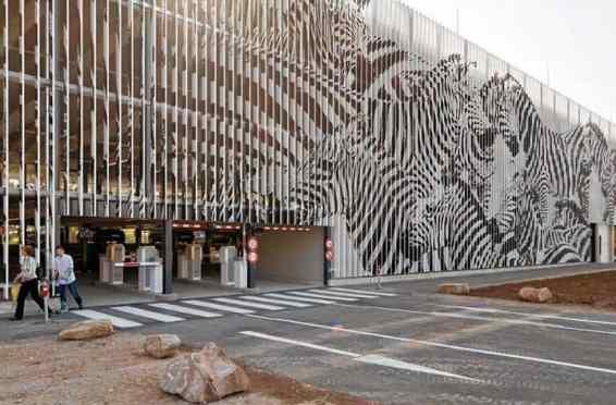 zebra perspective art