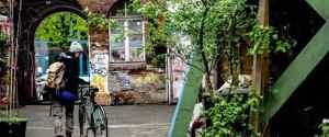 Germany's Hidden Gem: Exploring Hamburg by Bike