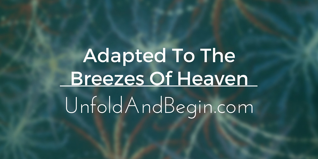 Adapted To The Breezes Of Heaven