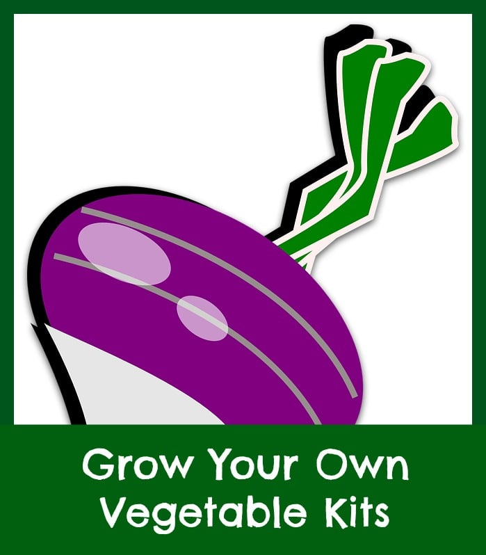 Yard and garden archives unique and useful finds for Grow your own vegetable garden