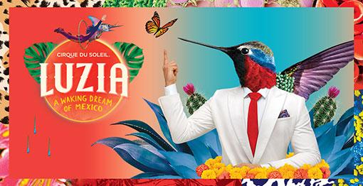 Cirque du Soleil - July 21 - August 20, 2017 United Center