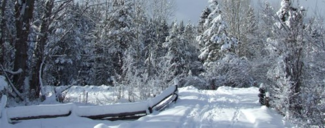 Snow READY – Pine Valley X-Country Ski Club Can't Wait!