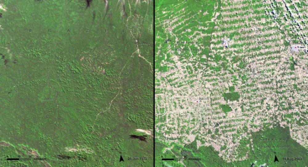Deforestación, Brasil (Junio 1975 – agosto 2009): Rondônia es parte de la Amazonia brasileña, en la frontera con Bolivia. Es una de las zonas periféricas en expansión dentro de la Amazonía, pasando de alrededor de medio millón de habitantes en 1980 a más de 1,5 millones en 2009. Las principales causas de la deforestación en la Amazonía en su conjunto -y especialmente en Rondônia- son el crecimiento de la población debido a la inmigración promovida por el gobierno y el crecimiento de la industria de productos de madera.