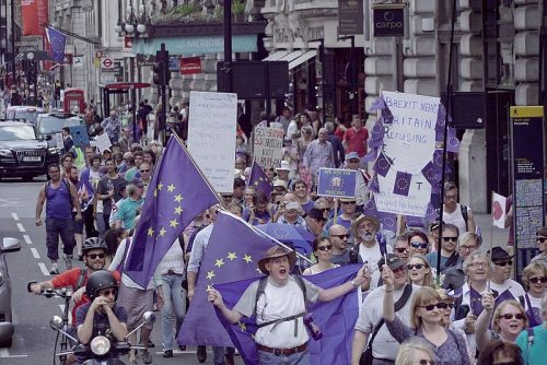 Manifestantes en movimiento pro Europa