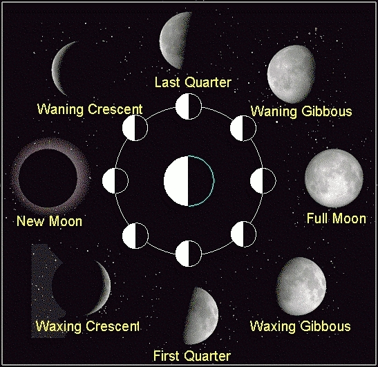 New Moon Schedules