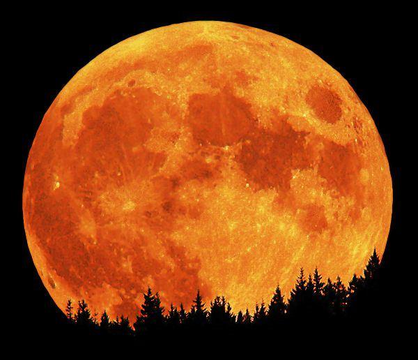 Kziężyc Myśłiwych