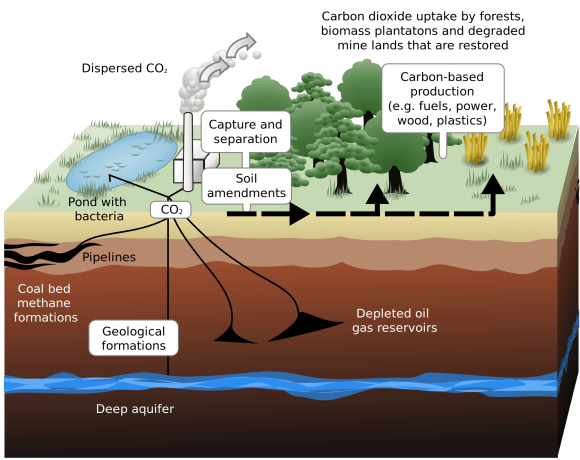 Schematic showing both terrestrial and geological sequestration of carbon dioxide emissions from a coal-fired plant. Credit: web.ornl.gov