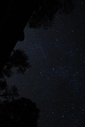 A vanishing treasure; true dark skies. (Photo by Author).