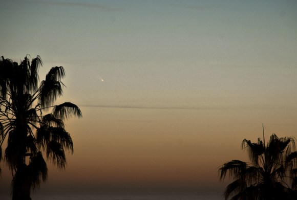 Comet PANSTARRS seen over Venice, California on March 11, 2013. Credit and copyright: Thad Szabo.