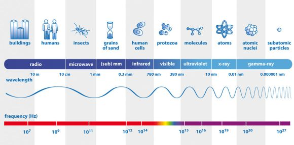 The visible colors, infrared, radio, X-rays and gamma rays are all forms of light and comprise the electromagnetic spectrum. Here you can compare their wavelengths with familiar objects and see how their frequencies (bottom numbers) increase with decreasing wavelength. Credit: ESA