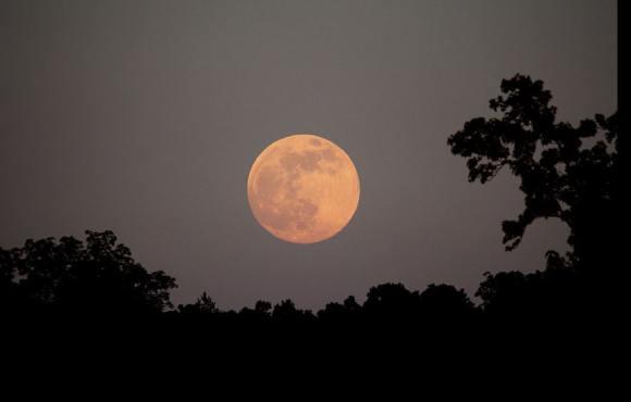 Full Moon Rising Over Northwest Georgia on June 22nd, 2013. Credit and copyright: Stephen Rahn.