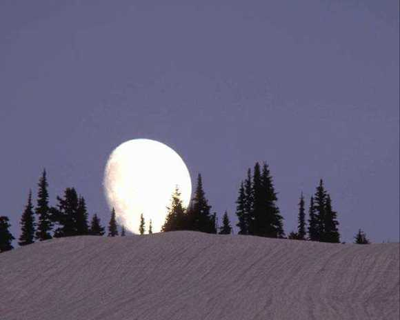 A wintertime rising gibbous Moon. (Image credit: Art Explosion).