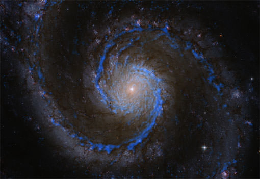 Molecular hydrogen in the Whirlpool Galaxy M51. The blueish features show the distribution of hydrogen molecules in M51, the raw material for forming new stars. The PAWS team has used this data to create a catalogue of more than 1,500 molecular clouds.  The background is a color image of M51 by the Hubble Space Telescope. Superimposed in blue is the CO(1-0) radiation emitted by carbon monoxide (CO) molecules, as measured for the PAWS study using the millimeter telescopes of the Institut de Radioastronomie Millimétrique. The CO molecules are used as tracers for molecular hydrogen.  Credit: PAWS team/IRAM/NASA HST/T. A. Rector (University of Alaska Anchorage)
